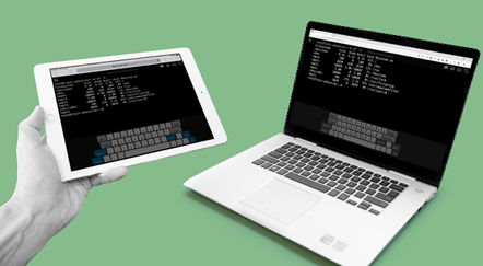 TTerm Connect, web based host connectivity. Terminal emulation from any device.