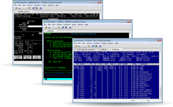 TTWin Terminal emulator for Windows